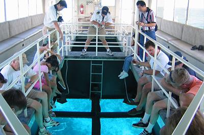 Glass bottom boat excursion in Sharm
