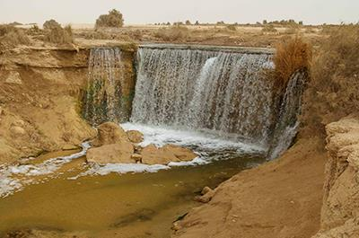 Day tour to Fayoum oasis